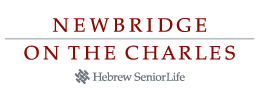 logo_newbridge